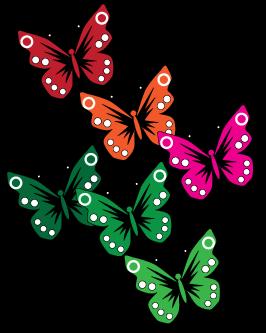papillons-couleur