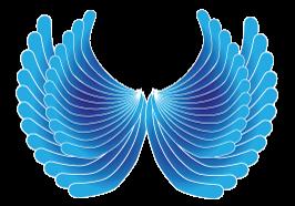 aile-bleue 5€